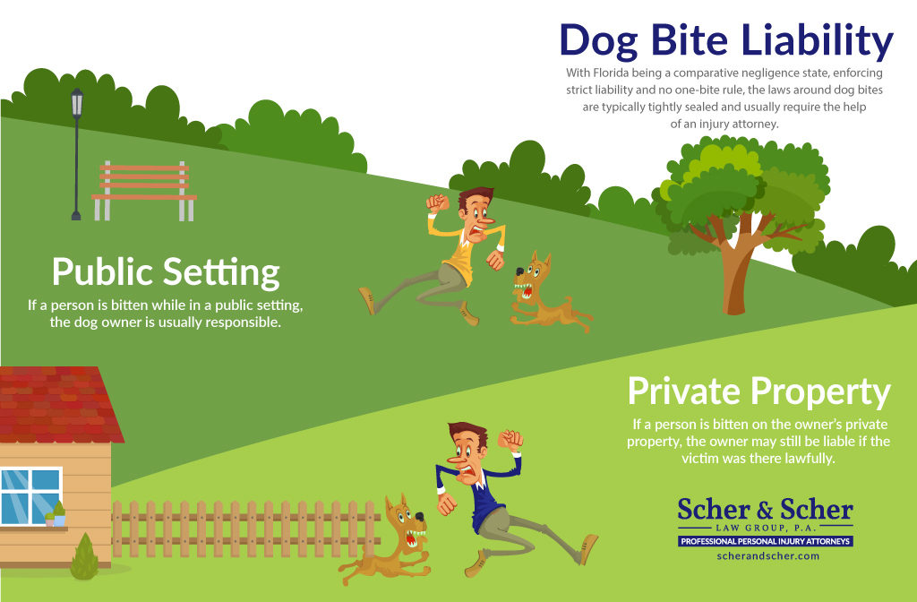 Dog Bite Injury Lawyer Hollywood FL, Dog Bite Liabilities for Public Settings and Private Property